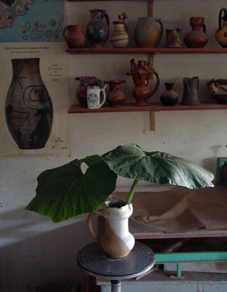 20110621072811-jardinde-hojas.jpg