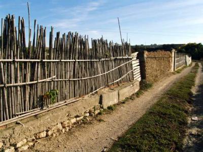 Los huertos (1)