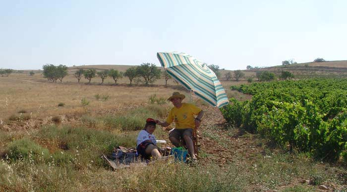 Baja España-Aragón 2008.(2)