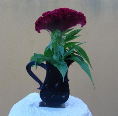 Flor y jarra de compañía.