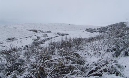 Por fin, nieve!