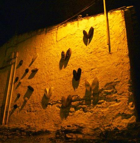 Domadores de Fuego 2010. En imágenes 6.