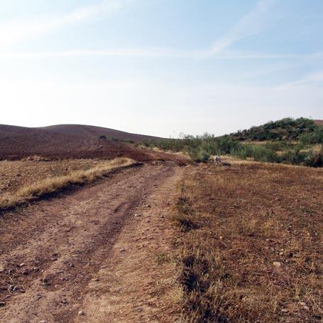 Caminos del Saso.